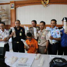 Bea Cukai Ngurah Rai Gagalkan Penyelundupan 17.192 Bayi Lobster