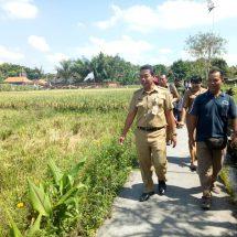 Bali Terancam Kekeringan hingga November, Dinas Tanaman Pangan Bantu Pompa Air dan Benih