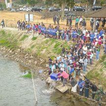 Lestarikan Lingkungan, Ikatan Alumni ITB Tebar 10 Ribu Bibit Ikan Koi di Danau Buyan