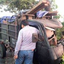 Polisi Buru Sopir Pick-Up Pembawa Penyu Langka