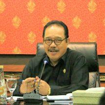 Wagub Bali: 25 Orang dalam Pengawasan Negatif Corona