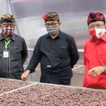 Gubenur Koster: Asyik di Sektor Pariwisata, Dunia Pertanian Bali Tertinggal