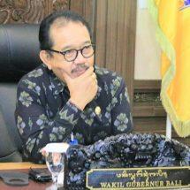 Wagub Berharap Bali Bisa Terdepan Kembangkan Industri Kreatif