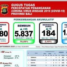 Perkembangan Covid-19 di Bali: Pasien Meninggal Bertambah Lima, Total 184 Orang