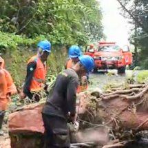 PLN UID Bali Siapkan Strategi Hadapi Bencana Alam