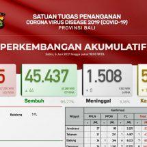 Update Penanggulangan Covid-19 di Bali: Positif 28, Sembuh 44 Orang