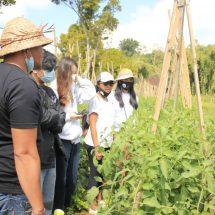 """TikTok Challenge dan Farm Visit """"HULU HILIR"""", Aksi Generasi Muda Dukung Petani Lokal"""