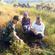 Jaga Keasrian Kintamani, Kodim Bangli Bersama Warga Gelar Penghijauan