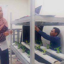 """Mahasiswa FTP UGM Kembangkan Sistem Monitoring Tumbuh Kembang Tanaman """"Real Time"""""""