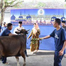 Hari Raya Idul Adha, Lanal Denpasar Bagikan 1.700 Kantong Daging