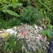 Tak Cemari Subak Kerdung, Made Yogi Arya Dwi Putra: Ajak Warga Bijak Buang Sampah