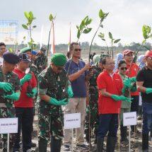 Dalam Rangka HUT TNI, Pelindo III Bersama TNI Tanam 300.074 Mangrove