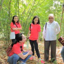 Peringati Hari Bambu, CIMB Niaga dan KEHATI Dorong Masyarakat Lestarikan Bambu