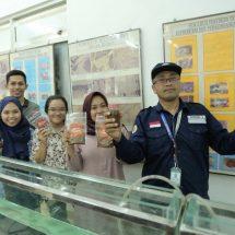 Terancam Punah, UGM Kembangkan Teknologi Budidaya Ikan Wader Pari