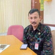 Kadisparda Bantah Bali Sepi Wisatawan, Yang Turun Hanya Wisatawan Tiongkok