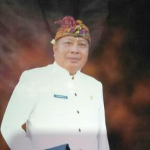 Focus Bantu Pangan Warga Lawan Covid-19, Anggota Dewan Imbau Tunda Mega Proyek di Bali