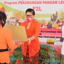 Ny. Putri Suastini Koster Dukung Keaktifan Kelompok Wanita Tani Jaga Ketahanan Pangan