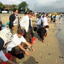 Lindungi Ekosistem Laut, Paslon Amerta Lepas Tukik di Serangan