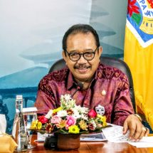 Wagub Cok Ace: Bali Perlu Tingkatkan Peran Industri Kreatif di Tengah Covid-19