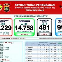 Update Penanggulangan Covid-19 di Bali: Pasien Sembuh Bertambah 85, Satu Meninggal