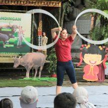 Satwa Endemik Indonesia Ini Meriahkan Perayaan Imlek 2021 di Bali Safari