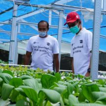 "Dukung Sektor Pertanian, PLN UID Bali Sosialisasikan ""Electrifying Agriculture"""