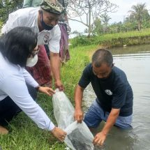 "Bapas Denpasar Gelar Pelatihan Budidaya Ikan Air Tawar bagi ""Klien"""