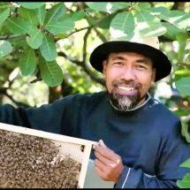 Gandeng Petani Madu Dunia, UMKM Binaan Pertamina Inisiasi Honey Global Project