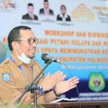 """""""Parapara Emas"""",Strategi Peningkatkan Kesejahteraan Petani Kelapa di Kabupaten Halmahera Barat"""