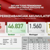 Update Penanggulangan Covid-19 di Bali: Positif 238, Sembuh 102 Orang