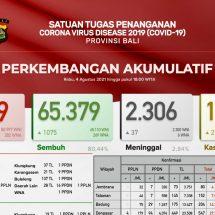 Update Penanggulangan Covid-19 di Bali, Pasien Sembuh Terus Meningkat